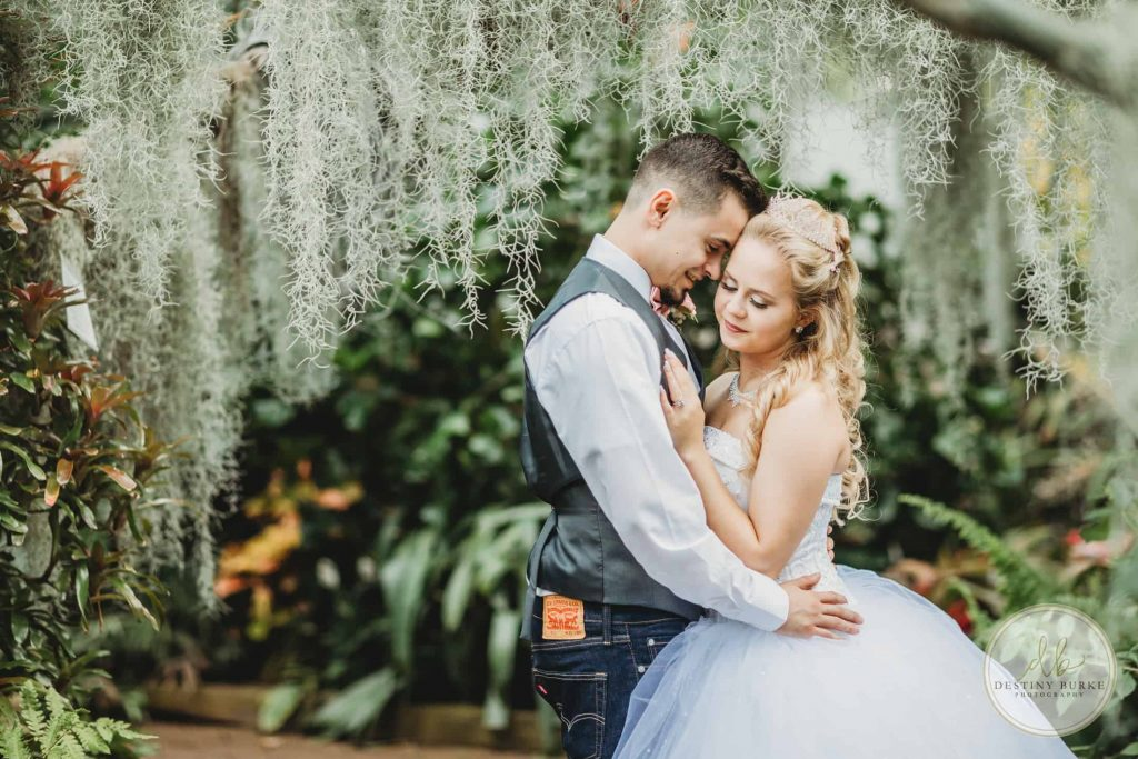 Lamberton Conservatory, Rochester, Wedding, Photography, Photographer, Moss, Bride, Groom